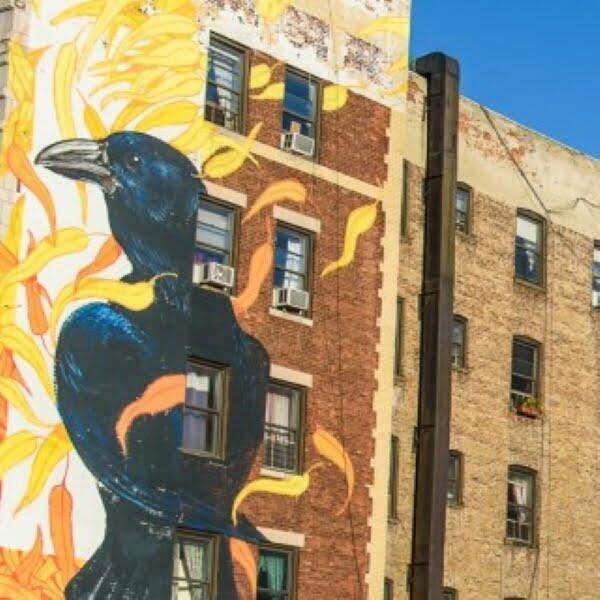 Audubon Bird as street art on the side of a building